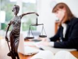 Le rôle de l'avocat